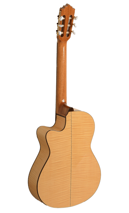 Guitar Cut Away 223 D