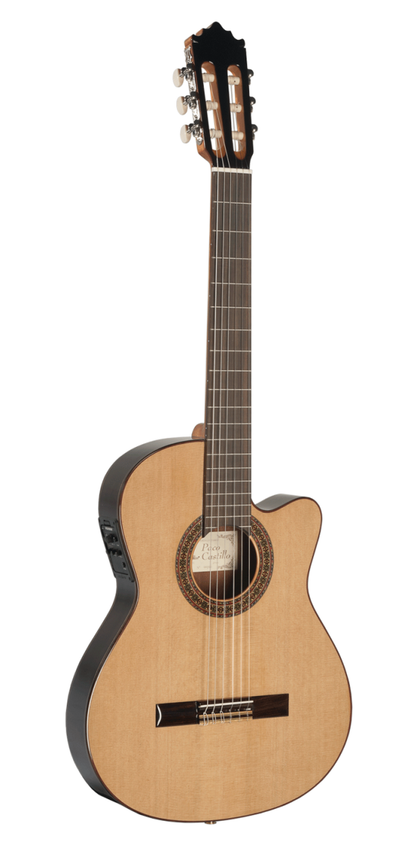 Guitarra cut-away thin body 232 TE